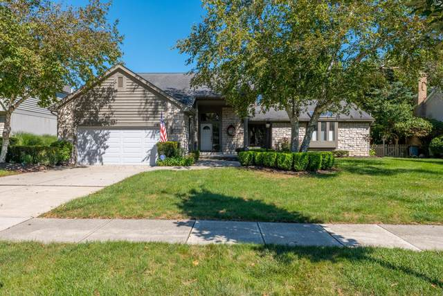 4234 Goldenseal Way, Hilliard, OH 43026 (MLS #221036376) :: LifePoint Real Estate