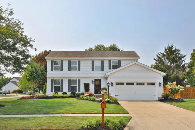 7034 Maple Hill Drive, Westerville, OH 43082 (MLS #221036418) :: Simply Better Realty