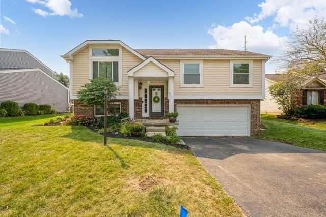 5321 Davidson Road, Hilliard, OH 43026 (MLS #221036456) :: LifePoint Real Estate