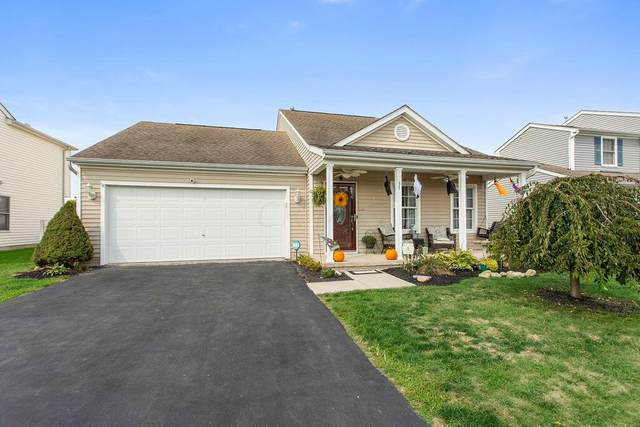 35 Bazler Lane, South Bloomfield, OH 43103 (MLS #221036467) :: ERA Real Solutions Realty