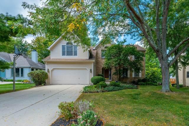 1035 Riva Ridge Boulevard, Gahanna, OH 43230 (MLS #221036580) :: Exp Realty