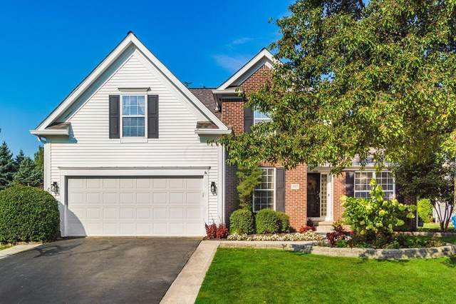 397 Abbotsbury Drive, Westerville, OH 43082 (MLS #221036723) :: Jamie Maze Real Estate Group