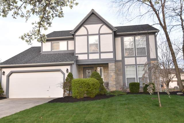 3370 Marshrun Drive, Grove City, OH 43123 (MLS #221036841) :: ERA Real Solutions Realty