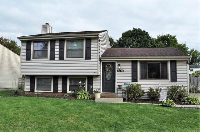 3971 Yukon Avenue, Groveport, OH 43125 (MLS #221036883) :: Sandy with Perfect Home Ohio