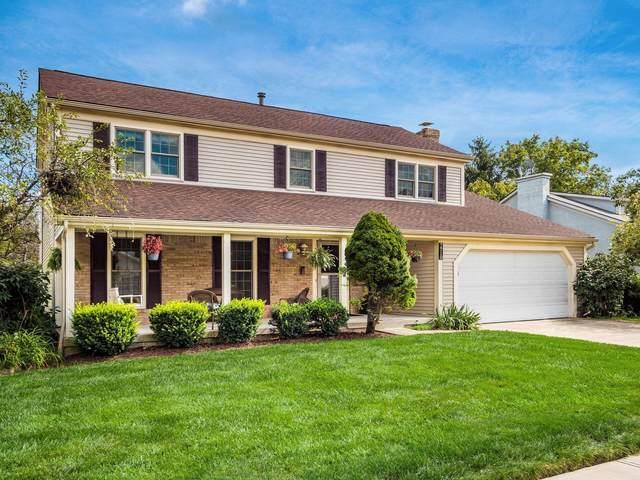 7718 Seddon Drive, Dublin, OH 43016 (MLS #221036919) :: Sandy with Perfect Home Ohio