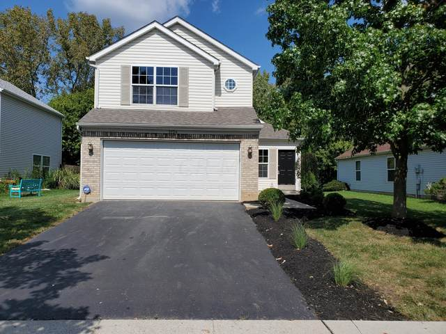 3134 Stoudt Place, Canal Winchester, OH 43110 (MLS #221037061) :: Millennium Group