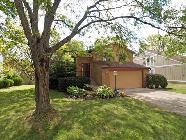 3314 Woods Mill Drive, Hilliard, OH 43026 (MLS #221037241) :: Exp Realty