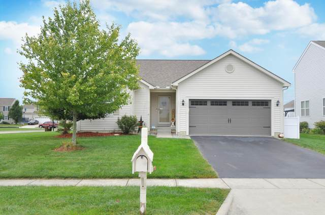 185 Red Oak Pass, Commercial Point, OH 43116 (MLS #221037410) :: Bella Realty Group