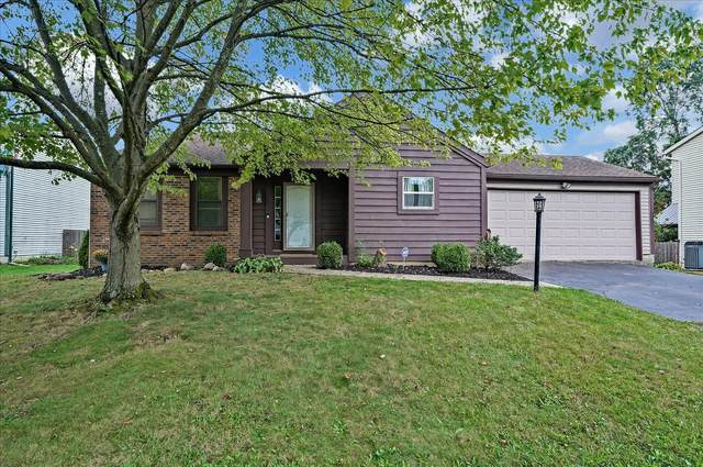 5643 Scepter Place, Columbus, OH 43235 (MLS #221037436) :: Bella Realty Group