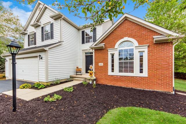 6691 Springview Drive, Westerville, OH 43082 (MLS #221037438) :: Greg & Desiree Goodrich | Brokered by Exp