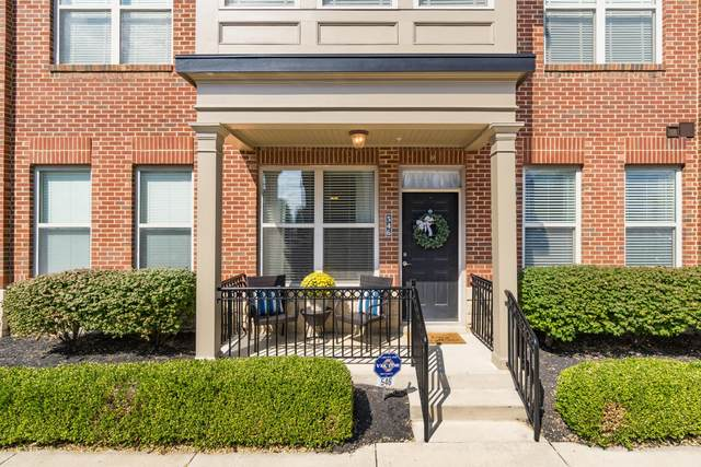 546 Quality Place, Columbus, OH 43215 (MLS #221037445) :: MORE Ohio