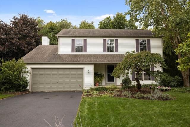 249 Hawthorn Boulevard, Delaware, OH 43015 (MLS #221037465) :: Signature Real Estate