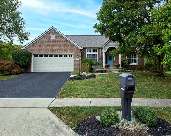 6464 Saylor Street, Canal Winchester, OH 43110 (MLS #221037536) :: Millennium Group
