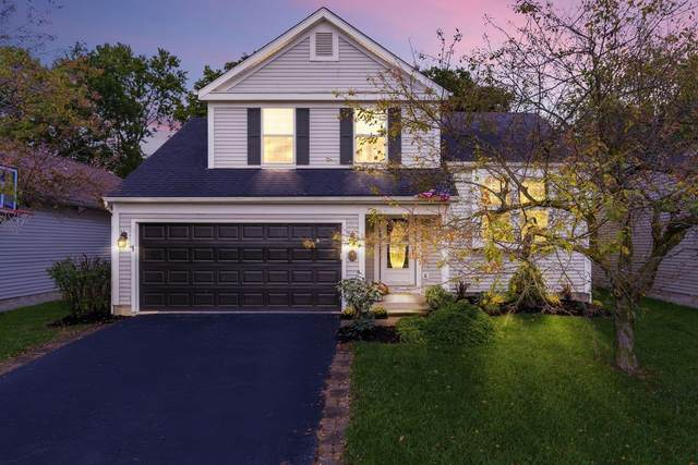 1616 Golden Cloud Lane, Columbus, OH 43228 (MLS #221037546) :: Simply Better Realty
