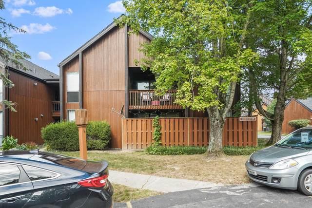 4825 Smoketalk Lane #6, Westerville, OH 43081 (MLS #221037556) :: RE/MAX ONE