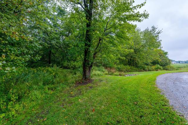 135 Dutch Ridge Way, Johnstown, OH 43031 (MLS #221037646) :: Exp Realty