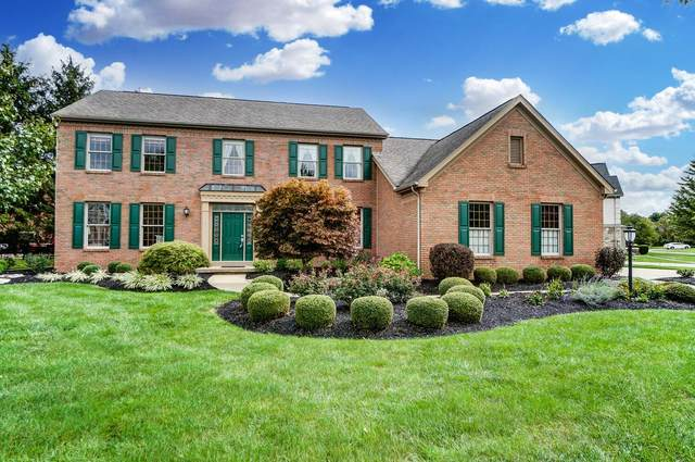 8615 Bunch Flower Court, Westerville, OH 43082 (MLS #221037925) :: Bella Realty Group