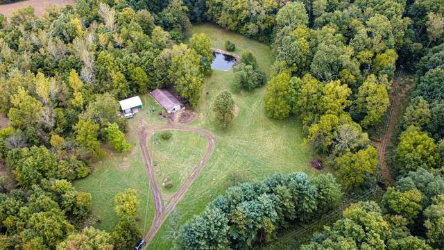 5515 Township Road 107, Mount Gilead, OH 43338 (MLS #221037934) :: Exp Realty