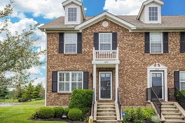 1073 Shady Lake Drive, Columbus, OH 43228 (MLS #221038127) :: Sandy with Perfect Home Ohio