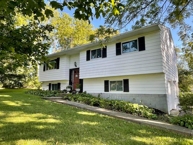 7677 Central College Road, New Albany, OH 43054 (MLS #221038251) :: Exp Realty