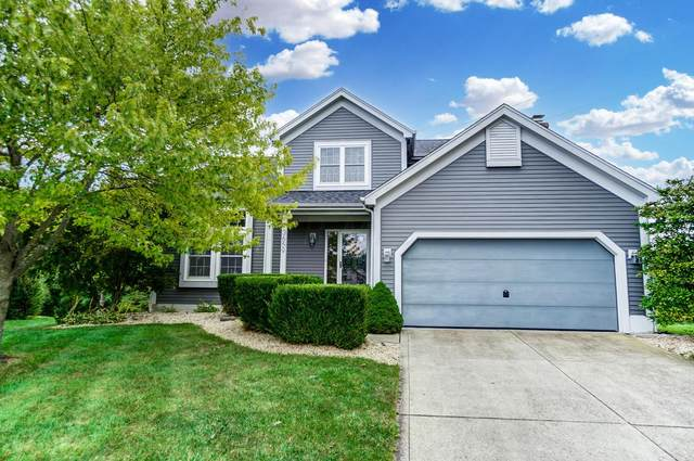 3659 Seattle Slew Drive, Columbus, OH 43221 (MLS #221038347) :: Exp Realty