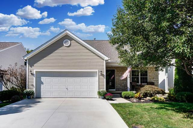 5596 Genoa Farms Boulevard, Westerville, OH 43082 (MLS #221038577) :: Berkshire Hathaway HomeServices Crager Tobin Real Estate