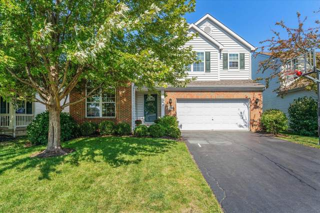 5958 Twin Pine Drive, New Albany, OH 43054 (MLS #221038674) :: Millennium Group