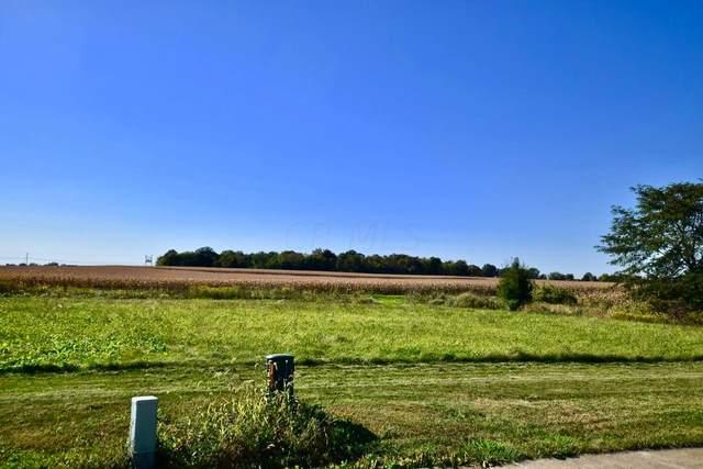 4389 Buckeye Run, Marion, OH 43302 (MLS #221038774) :: The Tobias Real Estate Group