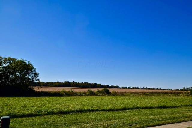 0 Buckeye Run Lot #18377, Marion, OH 43302 (MLS #221038865) :: The Tobias Real Estate Group