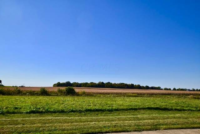 4429 Buckeye Run Road Lot #18376, Marion, OH 43302 (MLS #221038871) :: The Tobias Real Estate Group