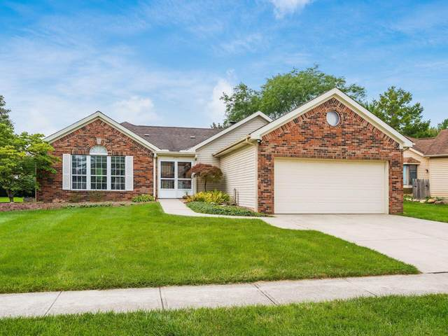 3947 Saddlehorn Drive, Columbus, OH 43221 (MLS #221039086) :: Exp Realty