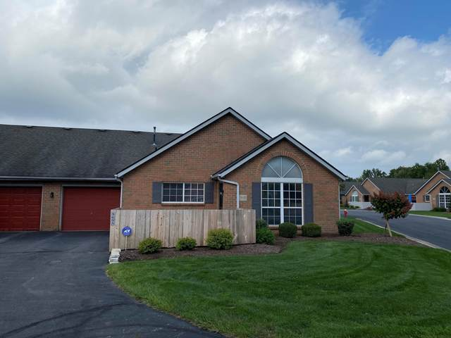 5695 Blendon Valley Drive, Columbus, OH 43230 (MLS #221039296) :: Sandy with Perfect Home Ohio