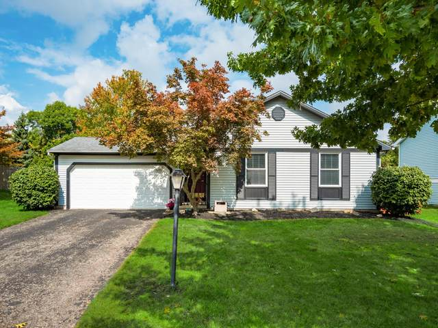 2256 Shirlene Drive, Grove City, OH 43123 (MLS #221039481) :: 3 Degrees Realty