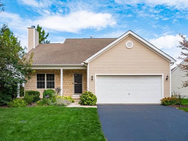 7001 Laver Lane, Westerville, OH 43082 (MLS #221039794) :: Berkshire Hathaway HomeServices Crager Tobin Real Estate