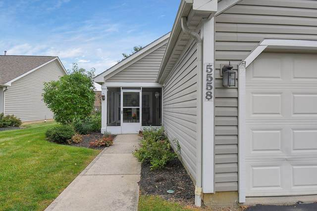 5558 Parkshire Drive, Columbus, OH 43229 (MLS #221039802) :: Exp Realty