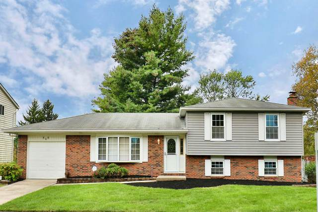 505 Landover Place, Columbus, OH 43230 (MLS #221039813) :: Simply Better Realty