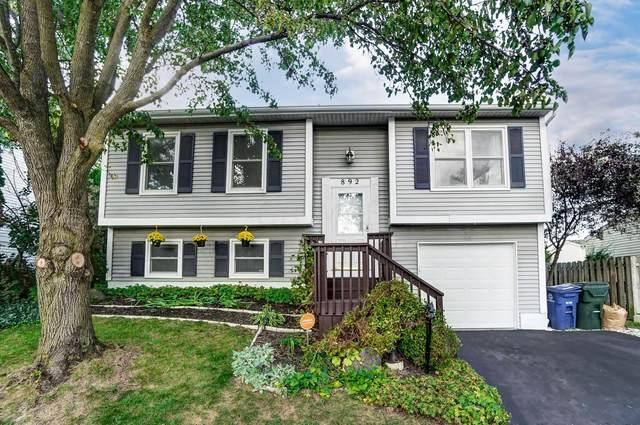892 Pebblelane Drive #56, Worthington, OH 43085 (MLS #221039868) :: Signature Real Estate