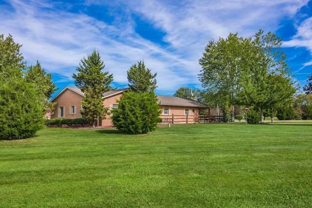 8900 Patterson Road, Hilliard, OH 43026 (MLS #221039966) :: Signature Real Estate