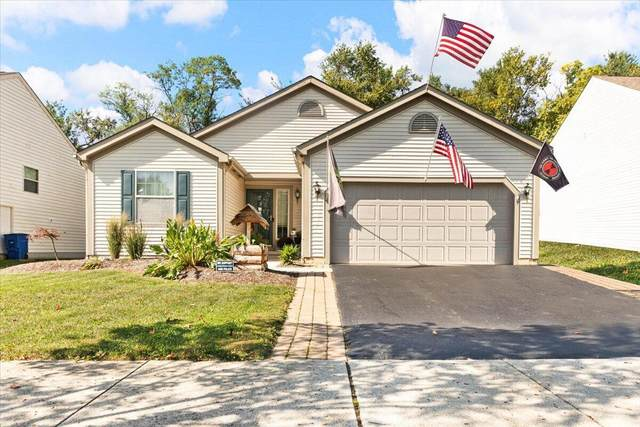 317 Stonhope Drive, Delaware, OH 43015 (MLS #221040362) :: 3 Degrees Realty