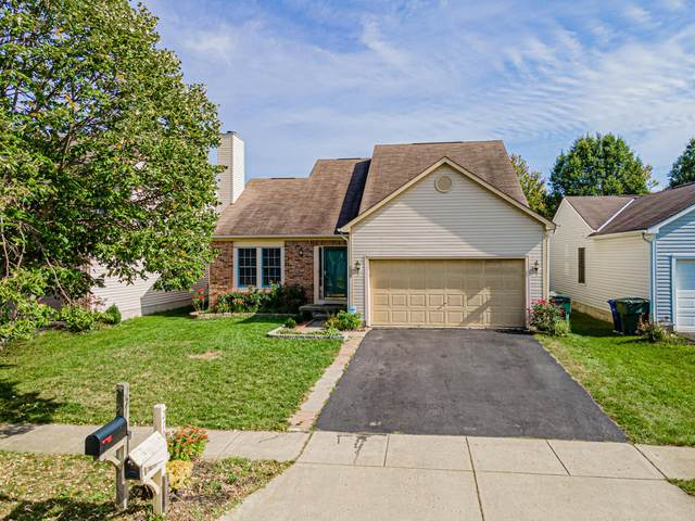 270 Yehlshire Drive Drive, Galloway, OH 43119 (MLS #221040476) :: Signature Real Estate