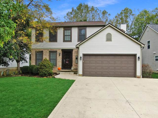 174 Dogwood Drive, Delaware, OH 43015 (MLS #221040478) :: Sandy with Perfect Home Ohio