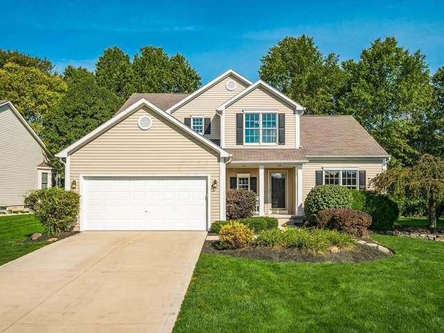 7289 Saddlewood Drive, Westerville, OH 43082 (MLS #221040494) :: Millennium Group