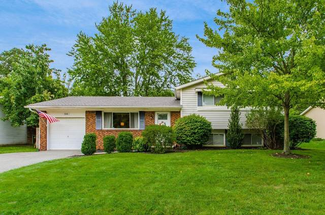 166 Allview Road, Westerville, OH 43081 (MLS #221040517) :: Millennium Group