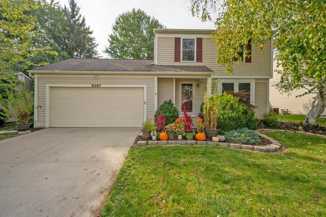 8387 Gallop Drive, Powell, OH 43065 (MLS #221040567) :: Millennium Group