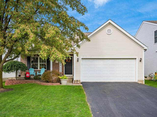 5778 Wellbrid Drive, Galloway, OH 43119 (MLS #221040703) :: Signature Real Estate