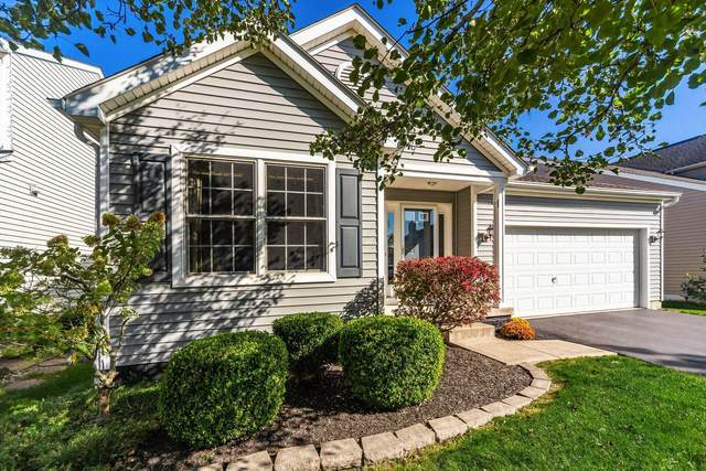 5924 Westbank Drive, Galloway, OH 43119 (MLS #221040722) :: Signature Real Estate