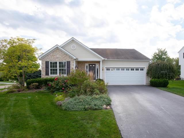 11827 Spring Creek Drive, Pickerington, OH 43147 (MLS #221040771) :: Signature Real Estate
