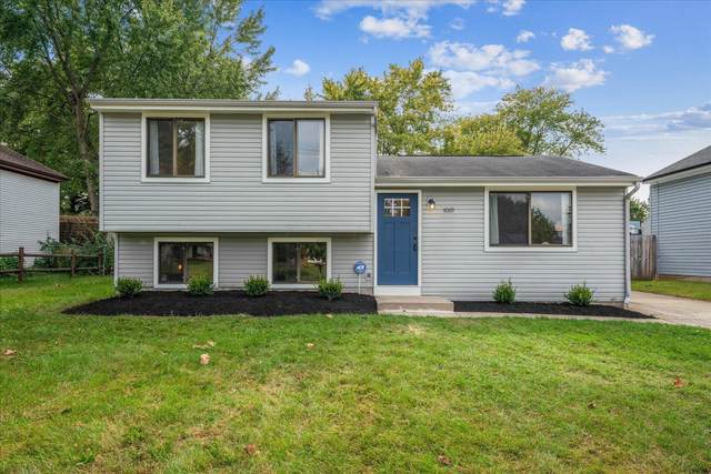 4069 Yellowstone Drive, Groveport, OH 43125 (MLS #221040905) :: Sandy with Perfect Home Ohio