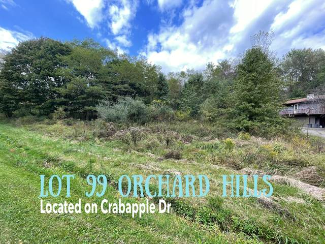 214 Crabapple Drive Lot# 99, Howard, OH 43028 (MLS #221040950) :: Sandy with Perfect Home Ohio