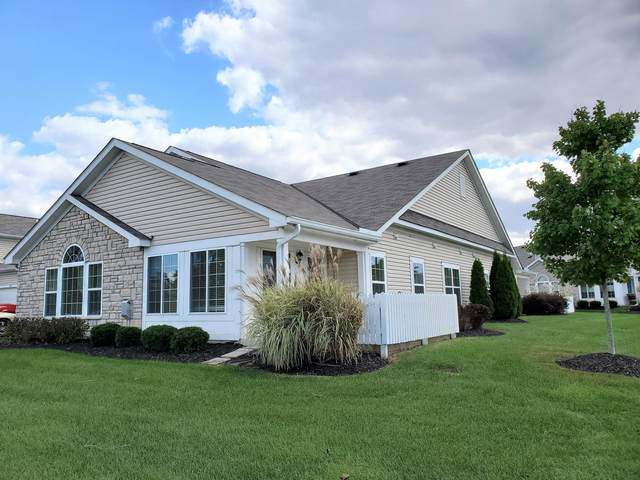 1687 Chestnut Farms Loop 5-1687, Grove City, OH 43123 (MLS #221041133) :: Jamie Maze Real Estate Group